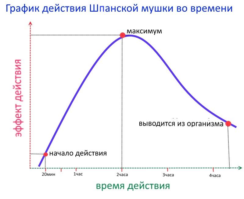 График действия Шпанской Мушки