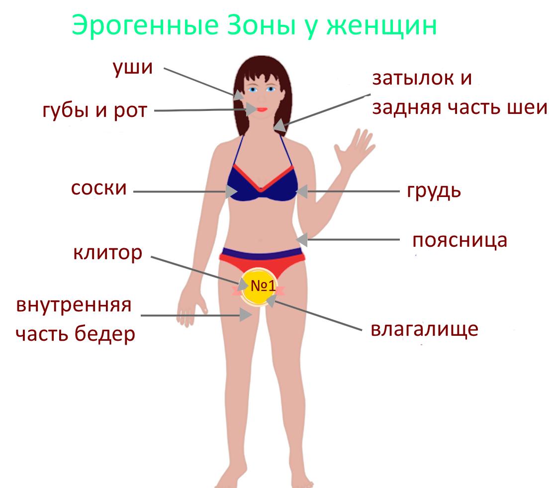 женские точки возбуждения внешность